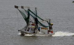 BP, Anadarko reach gulf spill agreement