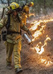 California's Rim Fire 80 percent contained
