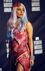 Paper warns against Gaga meat dress