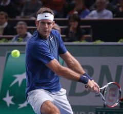 Del Potro takes first-round match in the Netherlands