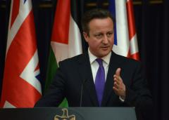 """Cameron on MH17: those responsible """"must be held into account"""""""