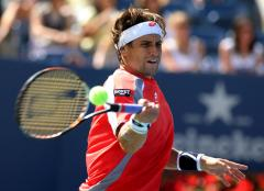 Ferrer leads Spain into Davis Cup semi