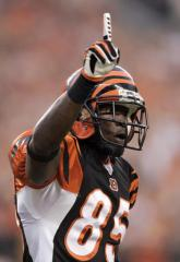 Chad Johnson legally changes his name