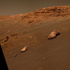 Meteorite yields clues about Mars' past