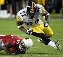 Son of Steelers' Harrison attacked by dog