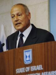 Egypt's FM doubts peace talks will succeed