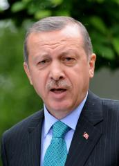 Turkish PM Erdogan claims victory in local elections