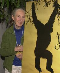 Jane Goodall to open research center