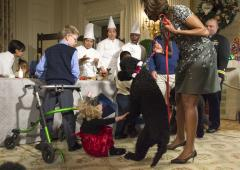 Toddler uninjured after being knocked over by Obama family dog
