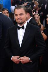 Leonardo DiCaprio wins Golden Globe for 'Wolf'