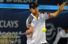 Roddick, Blake lose at Wimbledon
