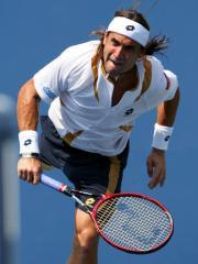 Ferrer win men's Ordina Open tennis event