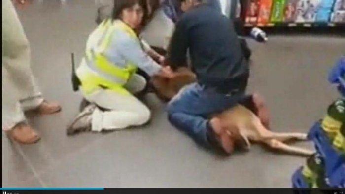 Watch deer tackled pinned down inside walmart upi com