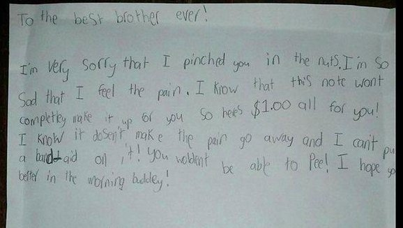 9 Year Old Writes Apology Letter For Pinching Brother In