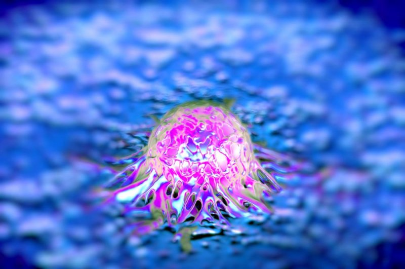 Ovarian cancer drug could fight prostate tumours