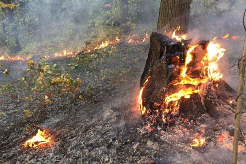 Pinnacle fire in SC