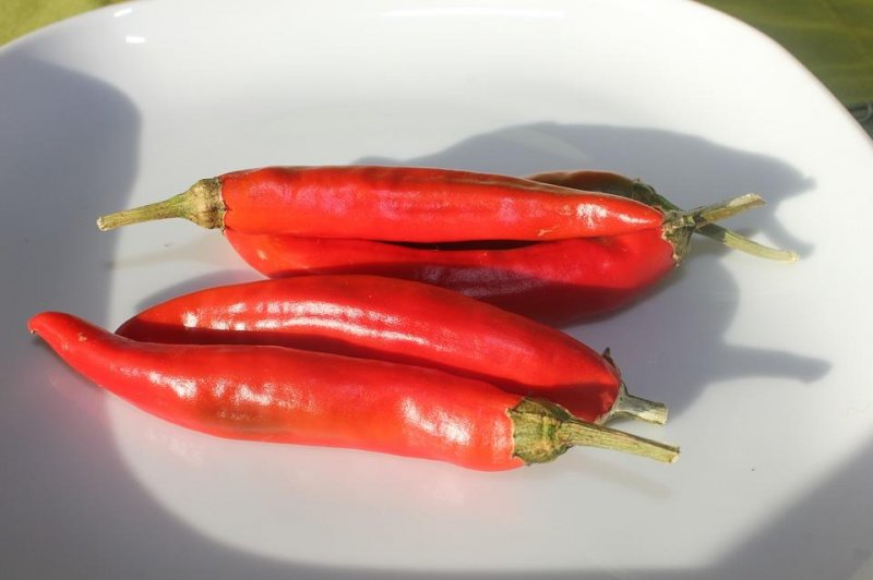 Eating hot chili peppers linked to decreased mortality