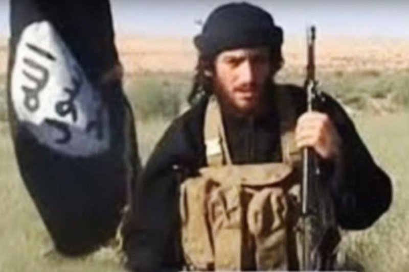 Isis leader killed in targeted air strike
