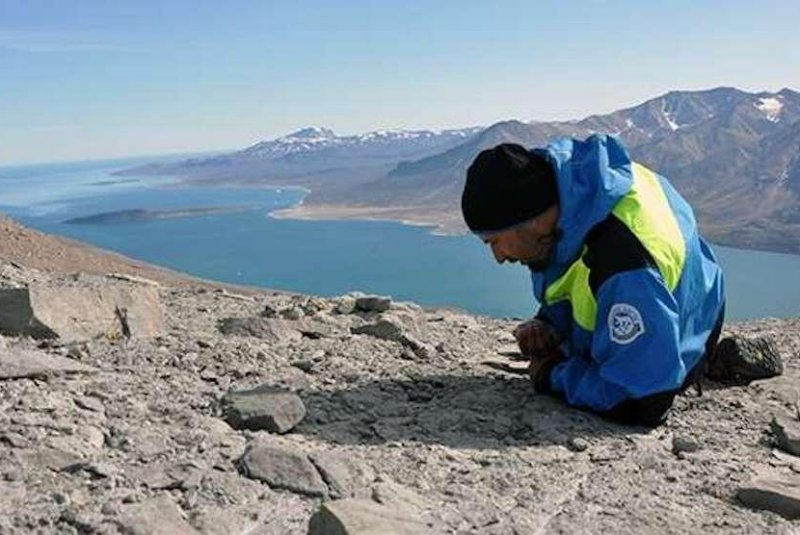 Greenland fossil goes back over 200 million years