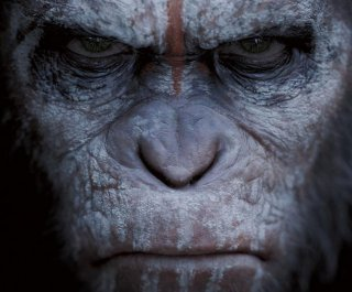 http://cdnph.upi.com/sv/em/i/UPI-1391403272495/2014/1/14032747193828/Dawn-of-the-Planet-of-the-Apes-releases-terrifying-new-trailer.jpg