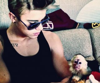 http://cdnph.upi.com/sv/em/i/UPI-25291366825421/2013/1/13668271413339/Bieber-wants-to-give-up-pet-monkey-shelter-says.jpg