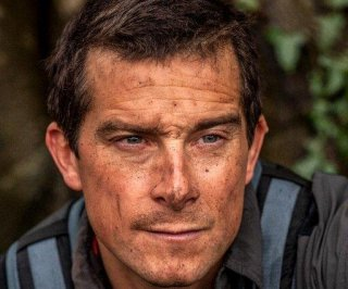 http://cdnph.upi.com/sv/em/i/UPI-2631407246677/2014/1/14037226616450/Bear-Grylls-on-how-to-survive-Sharknado-Go-for-the-gills.jpg