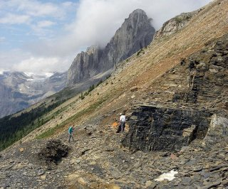 http://cdnph.upi.com/sv/em/i/UPI-3061392157536/2014/1/13921602066174/Geologists-hit-the-fossil-jackpot-in-Canada.jpg