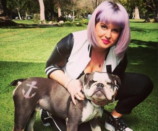 http://cdnph.upi.com/sv/em/i/UPI-3191406838812/2014/1/14068405764001/Kelly-Osbourne-faces-50K-suit-for-dog-poop-filled-apartment.jpg