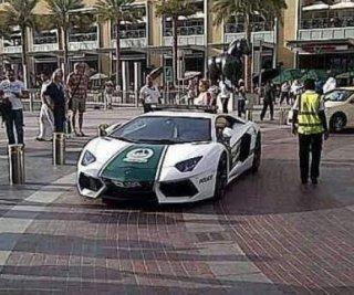 http://cdnph.upi.com/sv/em/i/UPI-3631365689111/2013/1/13656927079703/Dubai-unveils-new-Lamborghini-police-cars.jpg