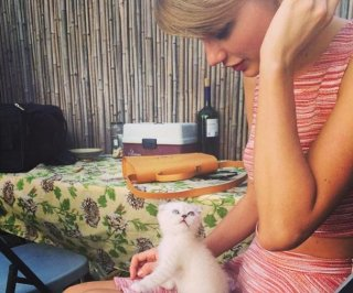 //cdnph.upi.com/sv/em/i/UPI-3901403187502/2014/1/14031887236417/Taylor-Swift-introduces-her-new-cat-Olivia-Benson-on-Instagram.jpg