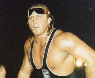 http://cdnph.upi.com/sv/em/i/UPI-4631365075698/2013/1/13650769514772/WWE-settles-lawsuit-over-Owen-Harts-image.jpg