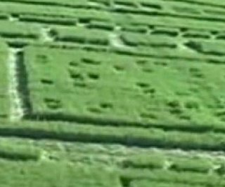 http://cdnph.upi.com/sv/em/i/UPI-6421389030937/2014/1/13890310315662/Tech-company-Nvidia-admits-to-crop-circle-stunt.jpg