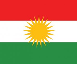 http://cdnph.upi.com/sv/em/i/UPI-8101404496238/2014/1/14044982483157/Kurds-to-concentrate-on-autonomy-self-determination.jpg