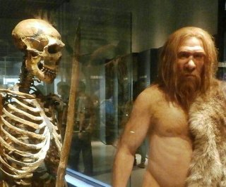 http://cdnph.upi.com/sv/em/i/UPI-8131397058307/2014/1/13970609307027/Study-suggests-modern-humans-and-Neanderthals-interbred.jpg