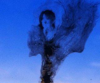 http://cdnph.upi.com/sv/em/i/UPI-85111344815842/2012/1/13448265994987/Man-selling-Michael-Jackson-bird-poop.jpg