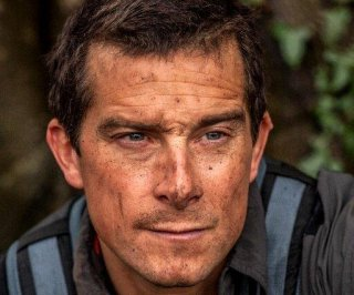 http://cdnph.upi.com/sv/em/i/UPI-9601403720361/2014/1/14037226616450/Running-Wild-with-Bear-Grylls-to-feature-Channing-Tatum-Zac-Efron-on-survival-adventures.jpg