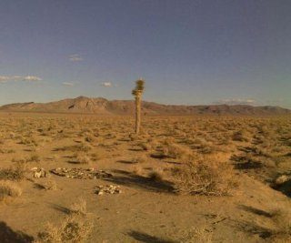 http://cdnph.upi.com/sv/em/i/UPI-9921396880700/2014/1/13968855113533/Deserts-soak-up-surprising-amount-of-carbon-dioxide.jpg