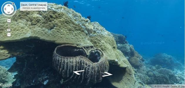 Google Maps Goes Deep With Underwater Street View UPIcom - Google ocean