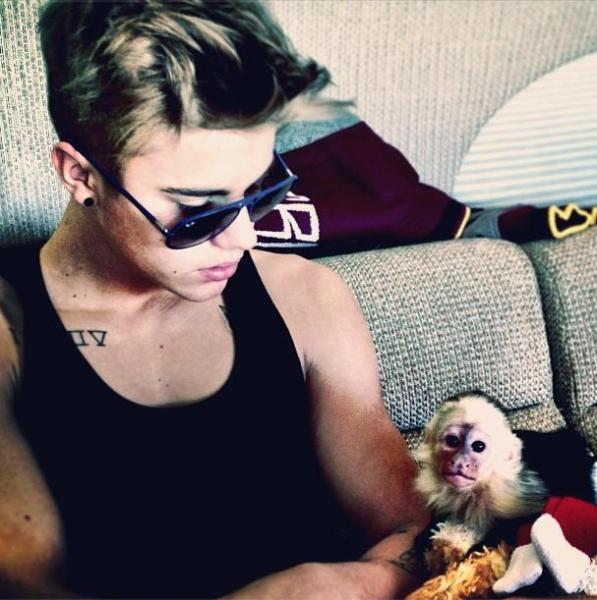 Bieber wants to give up pet monkey, shelter says