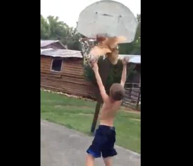 Kid plays basketball with live chicken in viral video