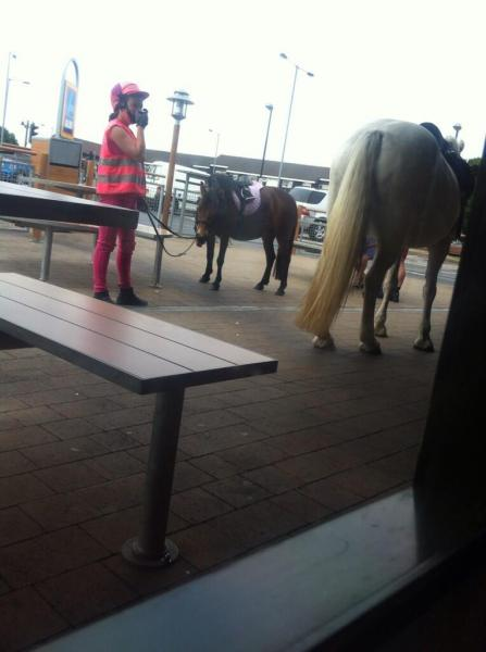 Horse in McDonald's brings poop, fine for owner