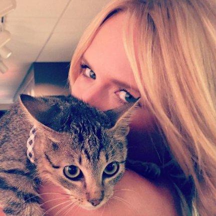 знакомства wild kitten: