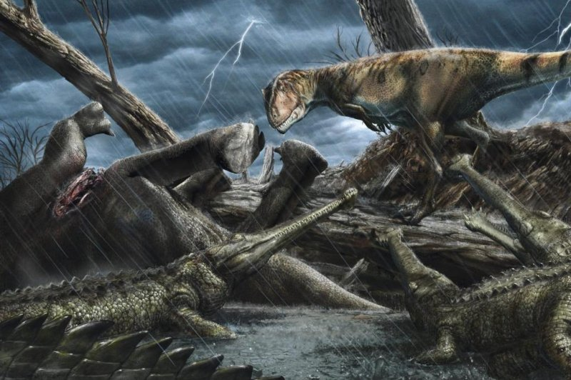 was place Predator-packed dangerous on most Sahara  Earth