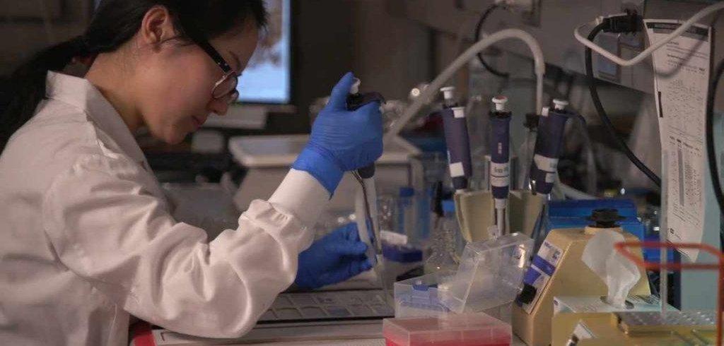 Experimental Drug Helps Immune System Fight Multiple