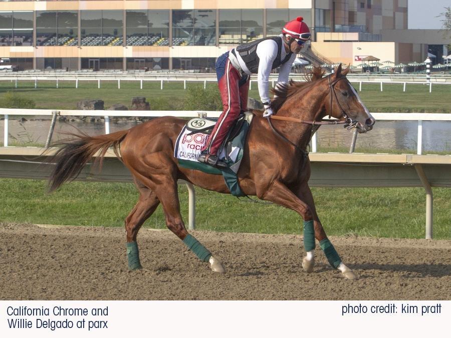 horse racing this weekend