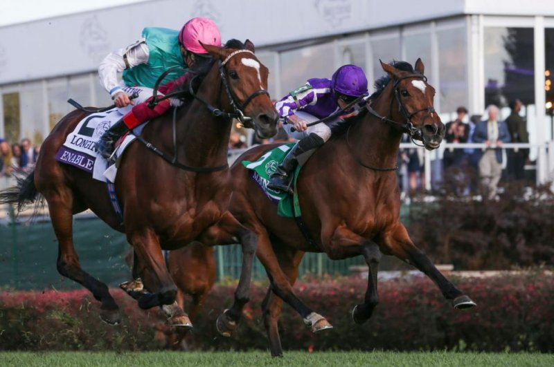Upi Horse Racing Preview Dramatic Melbourne Cup Leads