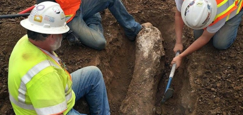 'Ice Age' fossils discovered at California construction ...