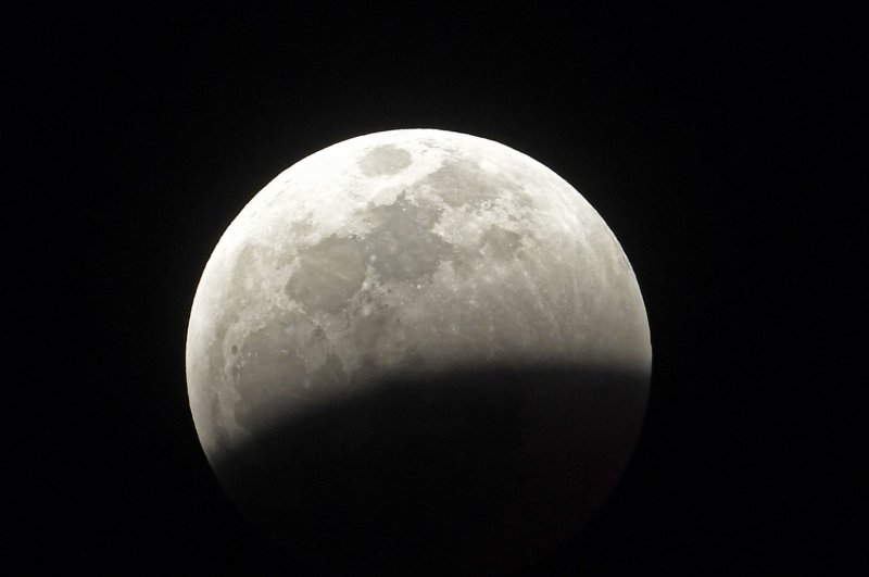 wolf blood moon january 2019 florida - photo #11