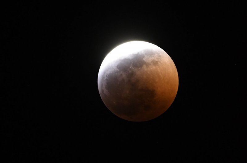 wolf blood moon january 2019 florida - photo #20