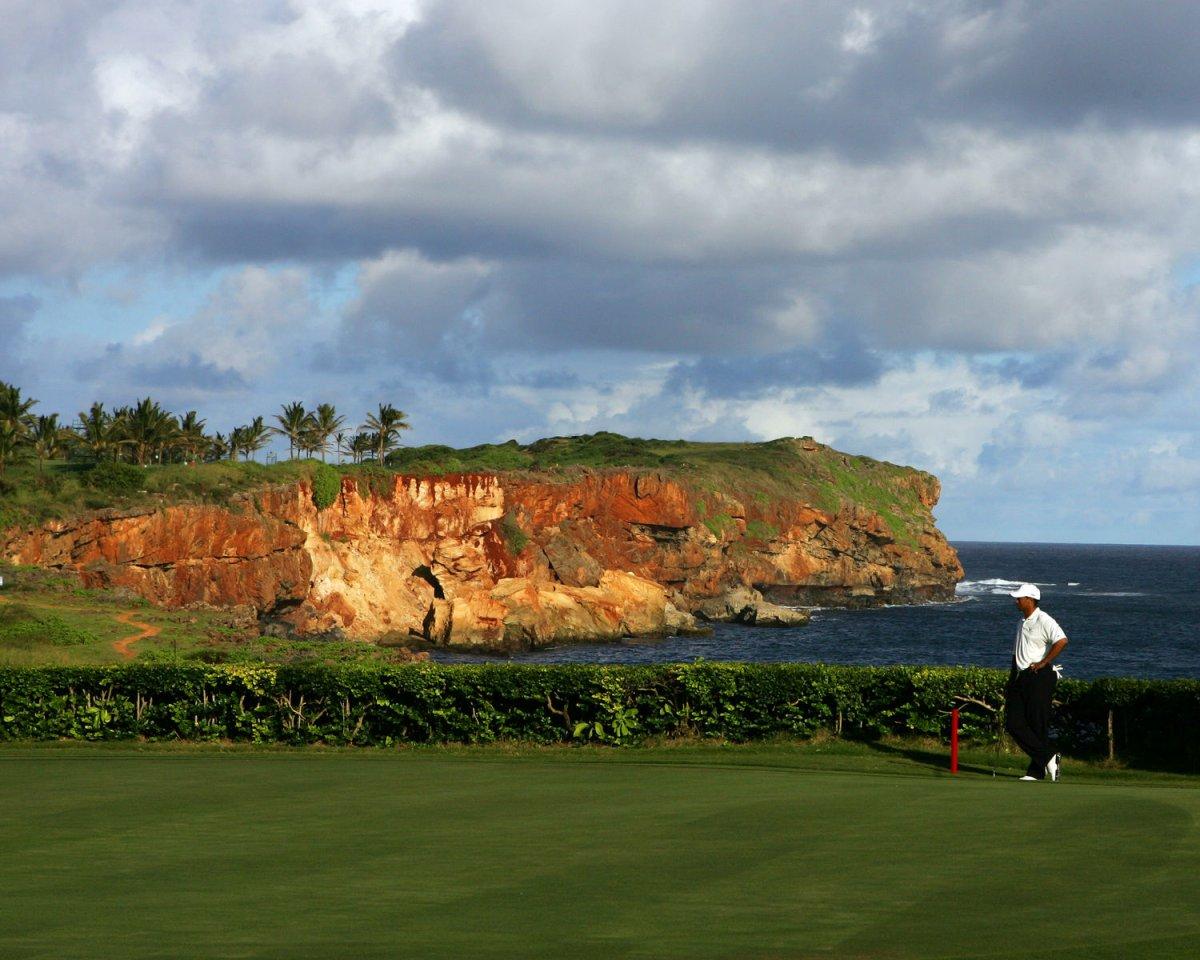 Hawaii tourism decline slowing - UPI.com